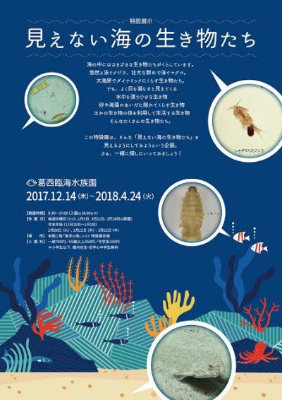 見えない海の生き物たち